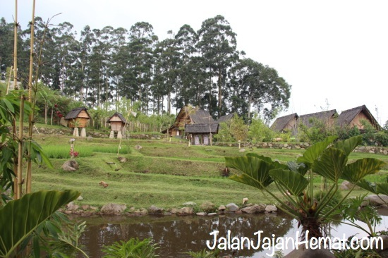 Penginapan Kampung Layung