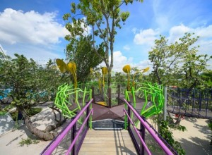 Rainforest Tree Houses