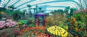 Flower Dome (gambar dari http://www.gardensbythebay.com.sg)