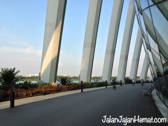 Jogging & Biking Track